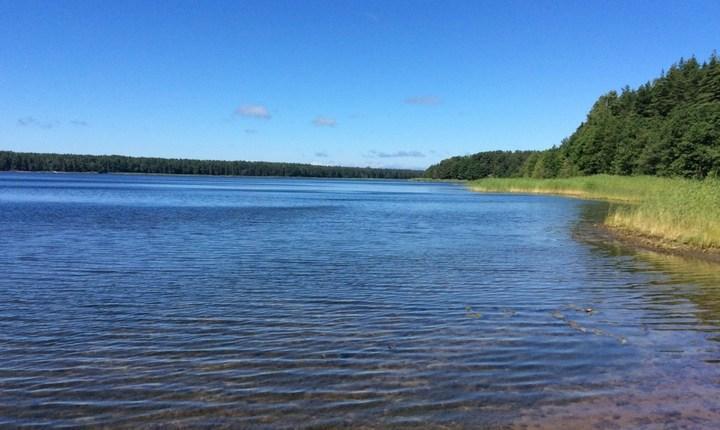 Липовское озеро, фото