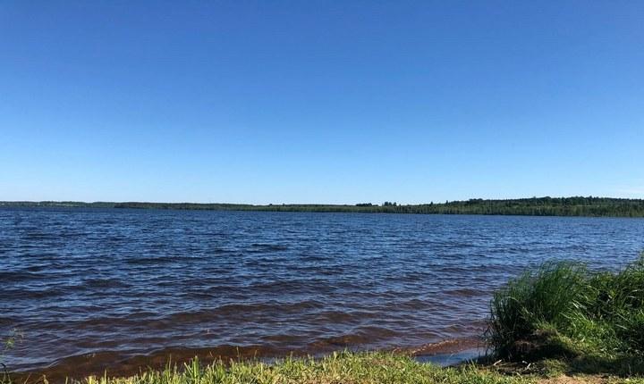 Мичуринское озеро, фото