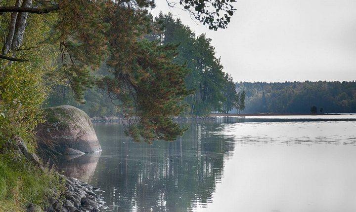Пионерское озеро, фото