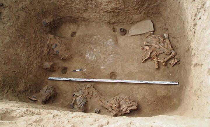 Погребение 1 кургана № 2. Дно могильной ямы после расчистки, фото
