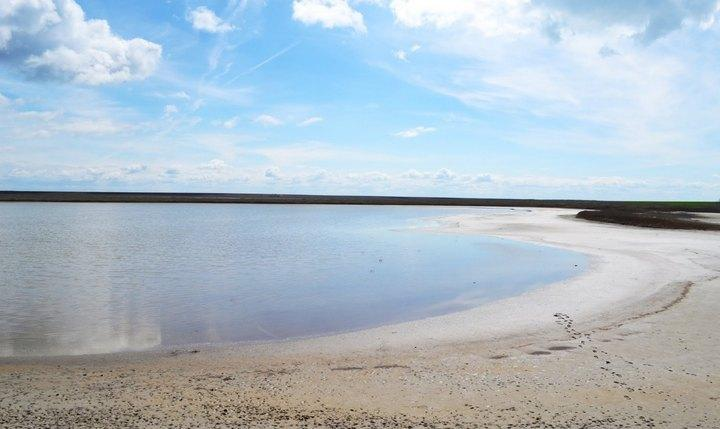 Целебные грязи озера Грузское, фото