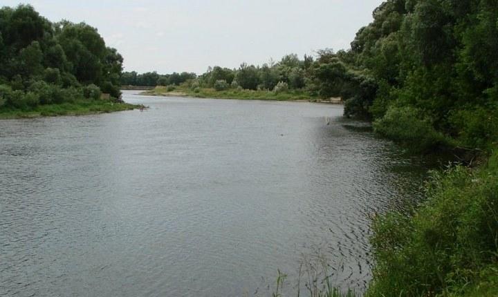 Устье реки Сейм, фото
