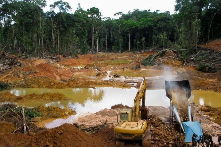 Вырубка лесов Амазонка, фото