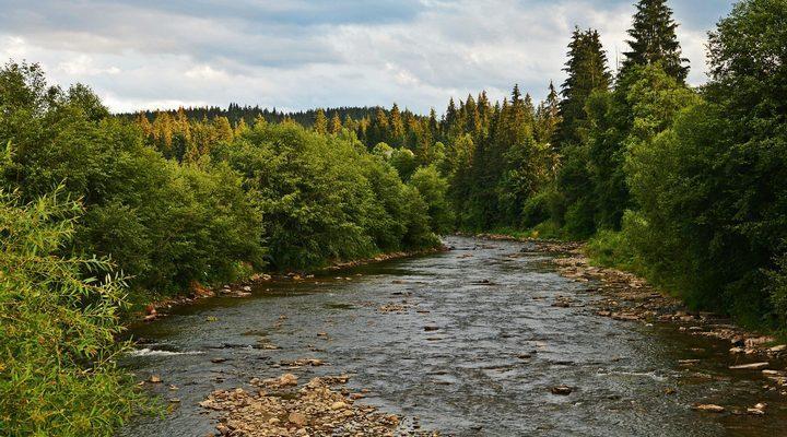 Река Прут, фото