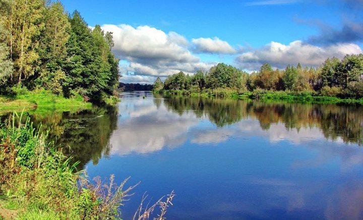 Река Птичь, фото
