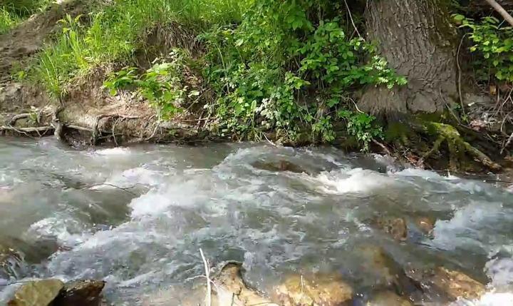 Река Мокрый Индол, фото