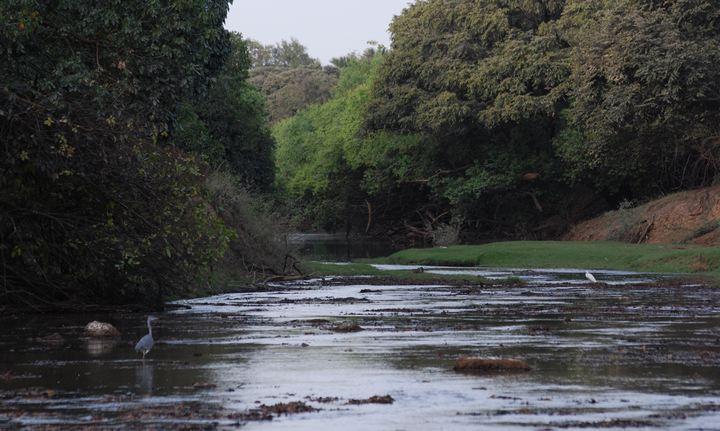 Река Оти, фото