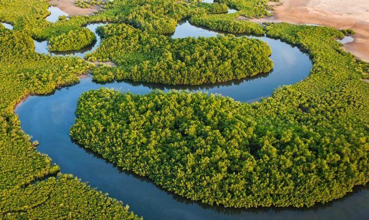 Река Салум, фото