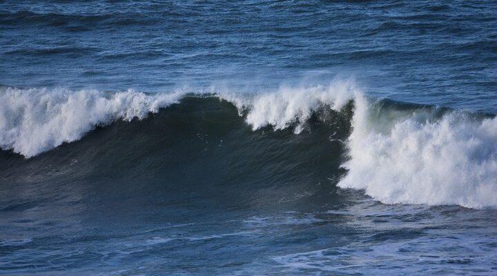 Тест все о океанах и морях, фото