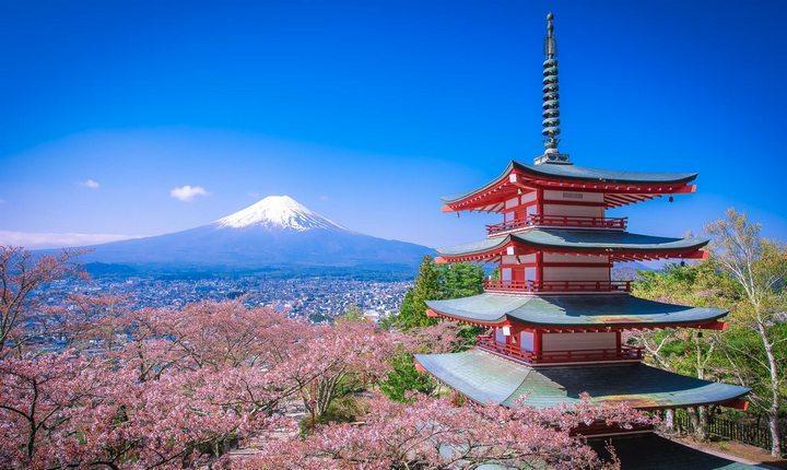 Исследование Японии Факт или вымысел, фото