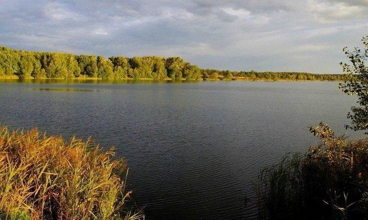Медвежьи озера в Щелковском районе, фото