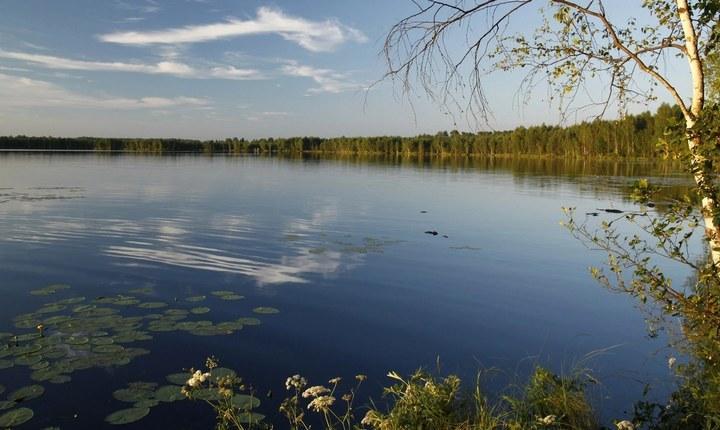 Озеро Алпатово, фото