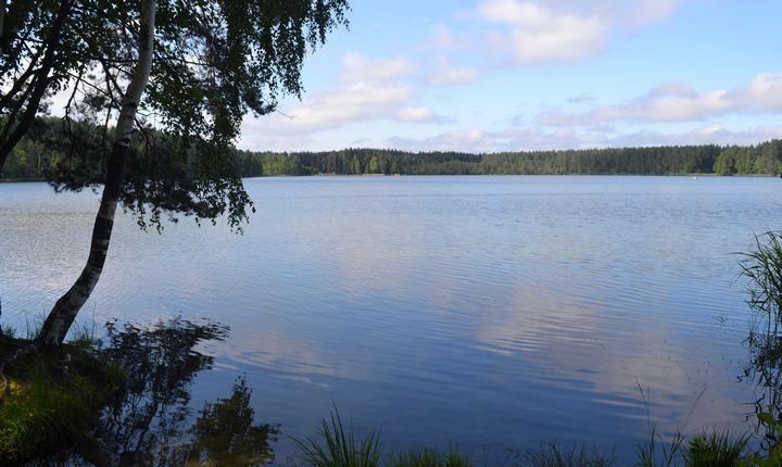 Озеро Дубовое, фото