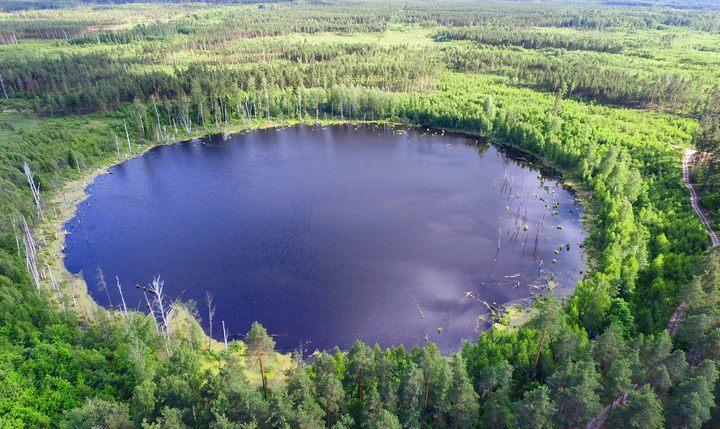 Озеро Смердячье, московская область, фото