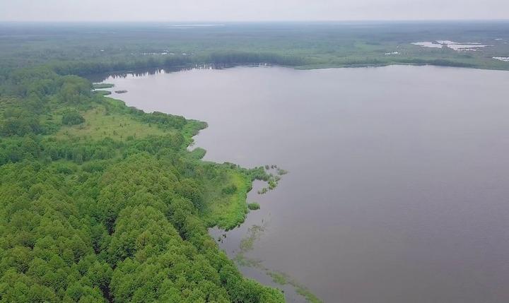Озеро Свиношное, фото
