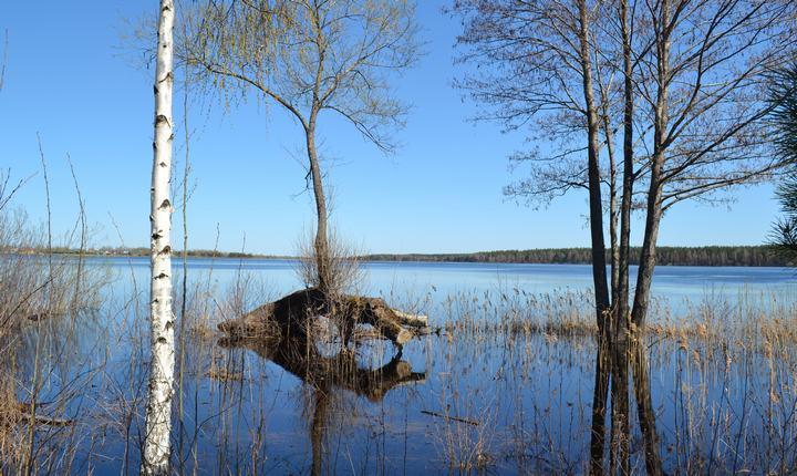 Озеро Святое Московская и Рязанская область, фото