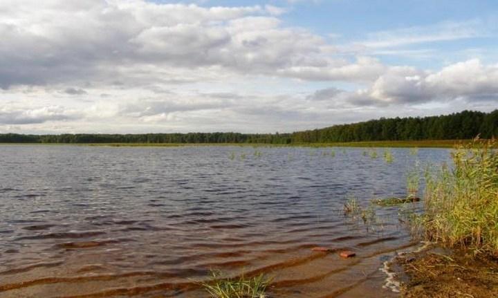 Озеро Воймега, фото