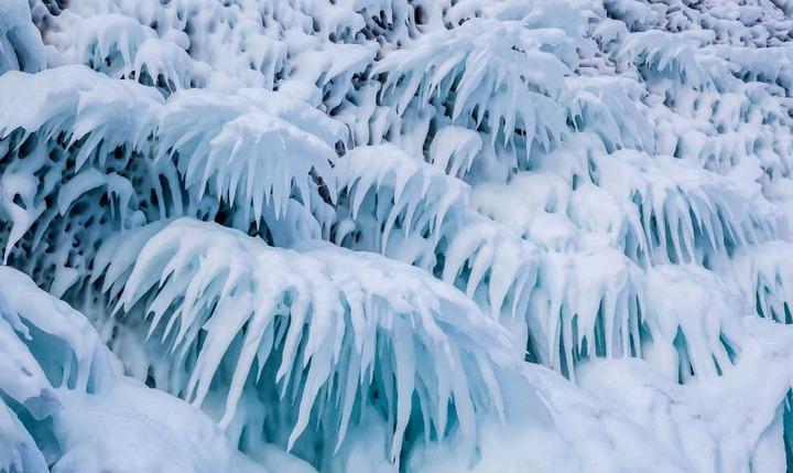 Сокуи на озере Байкал, фото