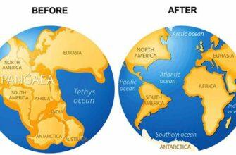 Тест по географии любопытные факты, фото