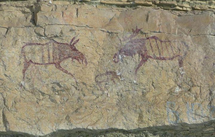 Ленские писаницы древних людей Тойон Арыы, фото