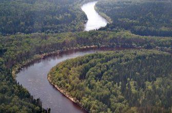 Река Демьянка, фото