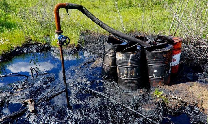 Нефтяные аварии возле реки Печора, фото